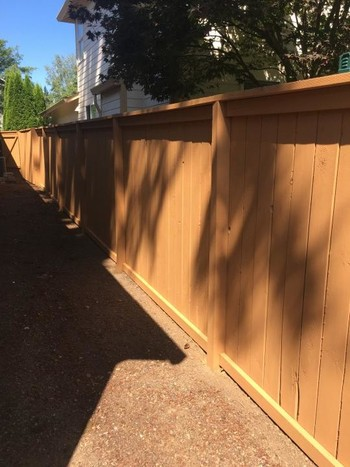 Exterior Fence Painting