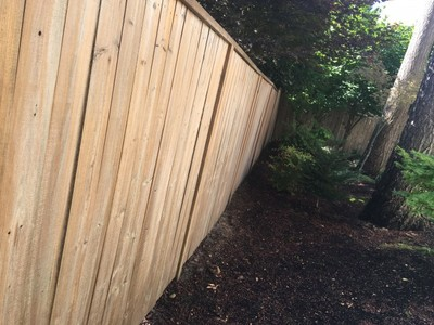 Before Fence repaint