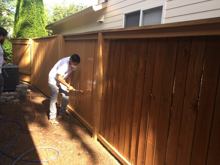 Painting Exterior Fence